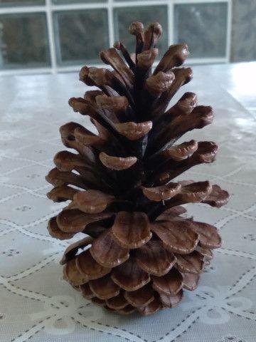 Pinhas para enfeite de Natal  - Foto 2