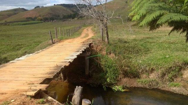 Fazenda em Silveiras - Cód 1505 - Foto 18