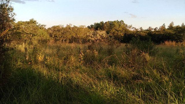 Sitio 20,10 hectares - Foto 4