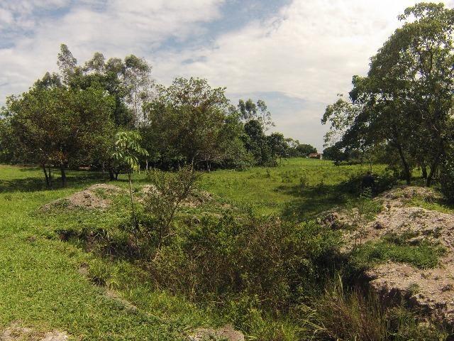 Fazenda Goianira 8 alqueres - Foto 12