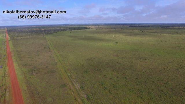 Fazenda 2.200 hectares nordeste mt nikolaiimoveis