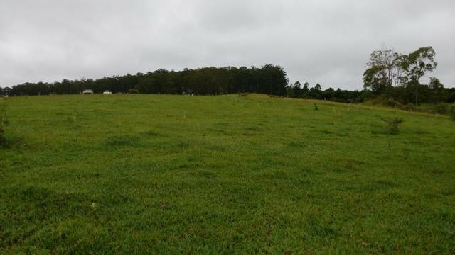 Otima fazenda com 73 alqueires na regiao de itapetininga - Foto 6