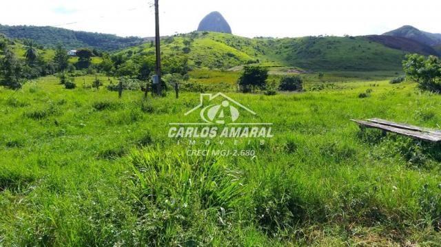 Fazenda à venda, , zona rural - carlos chagas/mg - Foto 7