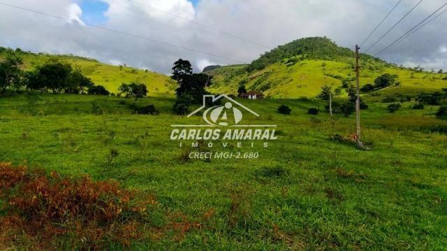 Fazenda à venda, , zona rural - carlos chagas/mg - Foto 15