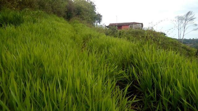 Fazenda 100000 m² - Foto 2