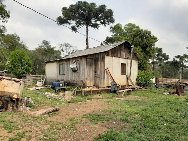 Fazenda de 100 Alqueires. 70 de capoeira - 16 km da Colônia Vitória. Guarapuava PR - Foto 9