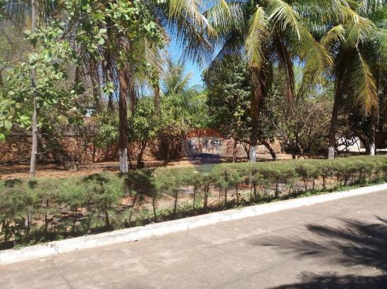 Terreno para locação em avenida padre cícero - Foto 4