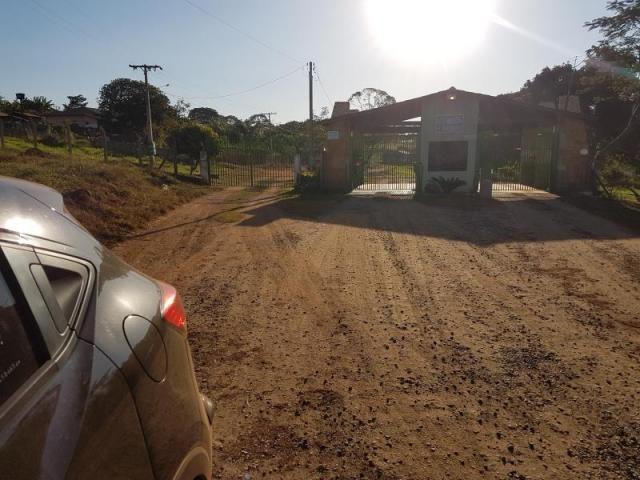 Chácara à venda com 3 dormitórios em Zona rural, Santa barbara de goias cod:em518 - Foto 3