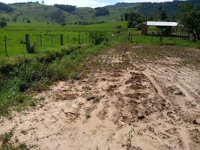 Sítio em Santo Antônio - Terreno Rural com Casa na RS 474 - Peça o Video - Foto 5
