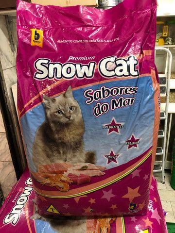 Ração pra gato promoção