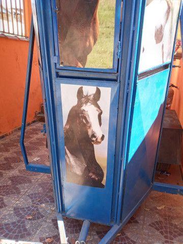 Trolete para cavalo - Foto 3