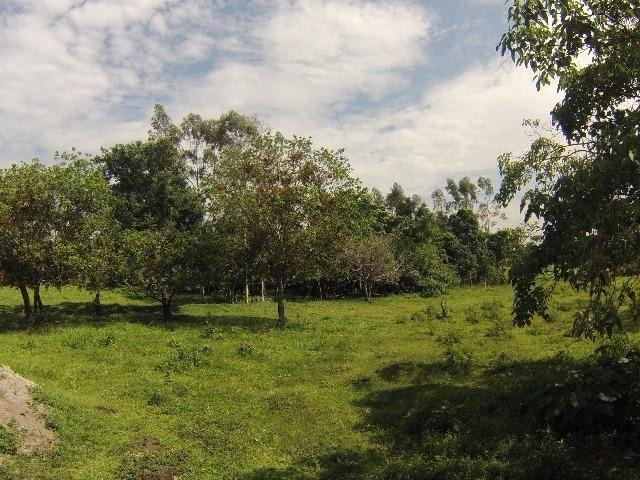 Fazenda Goianira 8 alqueres - Foto 3