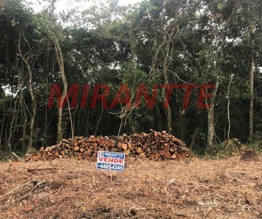 Terreno à venda em Serra da cantareira, São paulo cod:315630