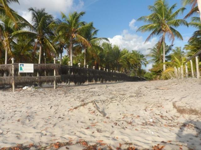 Terreno à venda em Centro, Camamu cod:55612 - Foto 9