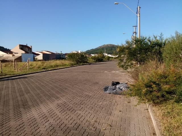 Terreno atrás do Zaffari Hípica - Foto 6