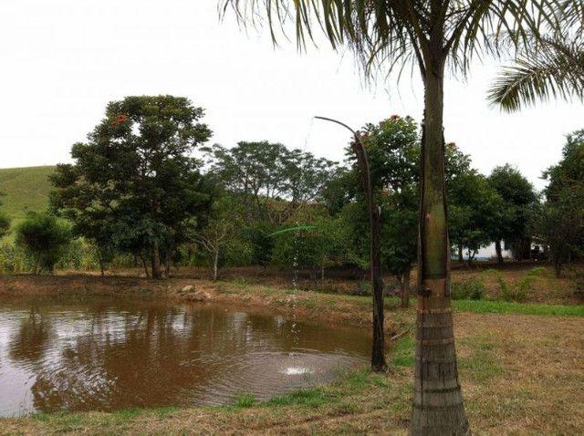 Fazenda em Silveiras - Cód 1505 - Foto 12
