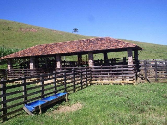 Fazenda em Silveiras - Cód 1505 - Foto 5