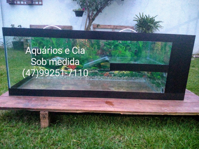 Aquaterrario e aquários - Foto 5