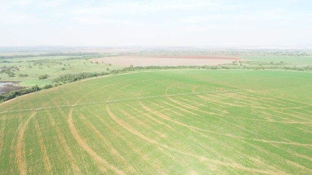 Fazenda com 695ha pra irrigação, na Regiao de João Pinheiro!! - Foto 2