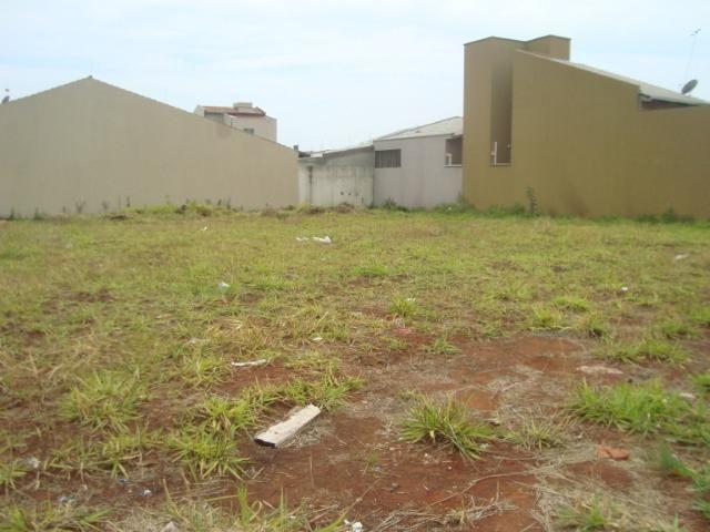 Lote Avenida Moinho dos Ventos, 501m2, Esquina em frente anel viário - Foto 11