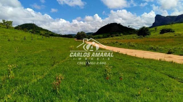 Fazenda à venda, , zona rural - carlos chagas/mg - Foto 2