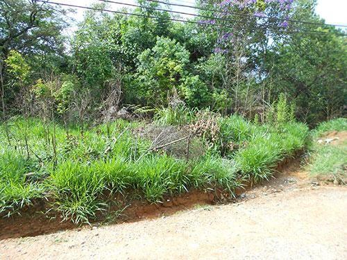 Terreno à venda em Jaçana, São paulo cod:136982