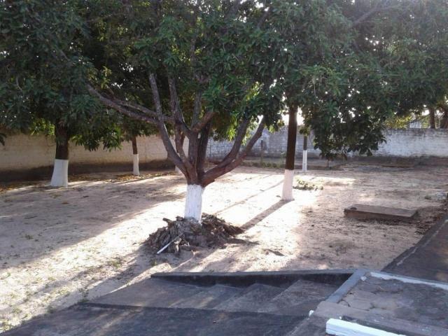 Chácara com 2 dormitórios à venda, 2400 m² por r$ 800.000,00 - araçagy - são josé de ribam - Foto 2