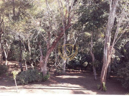 Terreno à venda, 1600 m² por r$ 100.000 - parque do imbui - teresópolis/rj - Foto 3