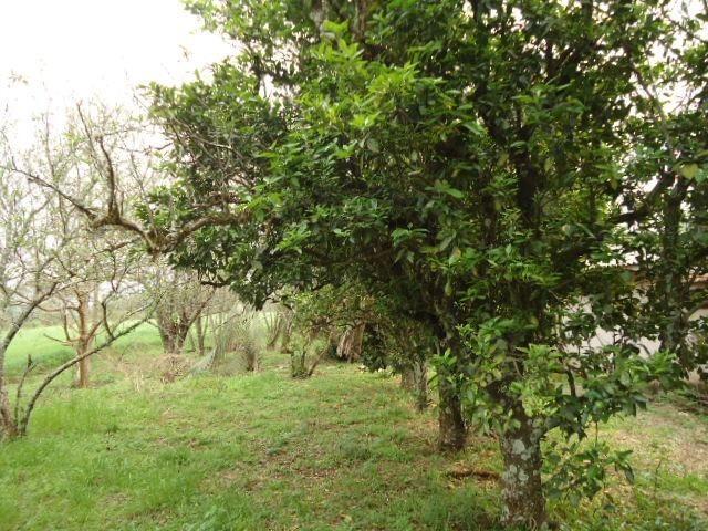(AR2350) Chácara em Vitória das Missões, RS - Foto 18
