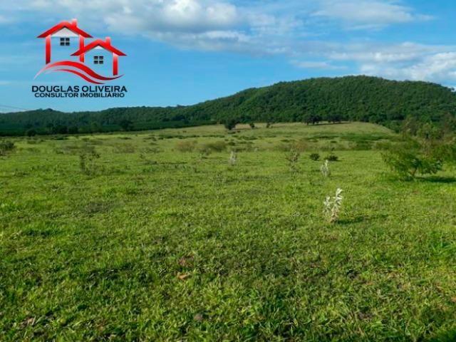 Sitio de 23 Alqueires em Pedregulho - Foto 7