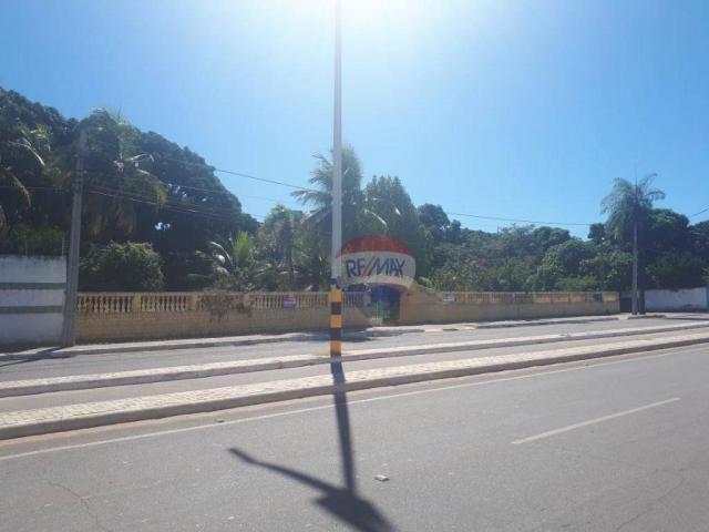 Terreno a venda, Avenida Virgílio Távora, Juazeiro do Norte! - Foto 3