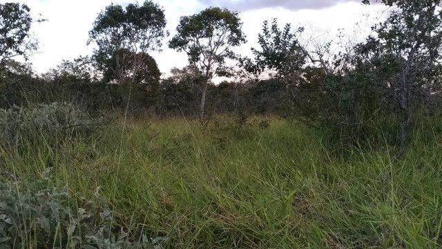 Sitio 20,10 hectares - Foto 9