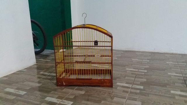 Gaiola boa - Foto 2