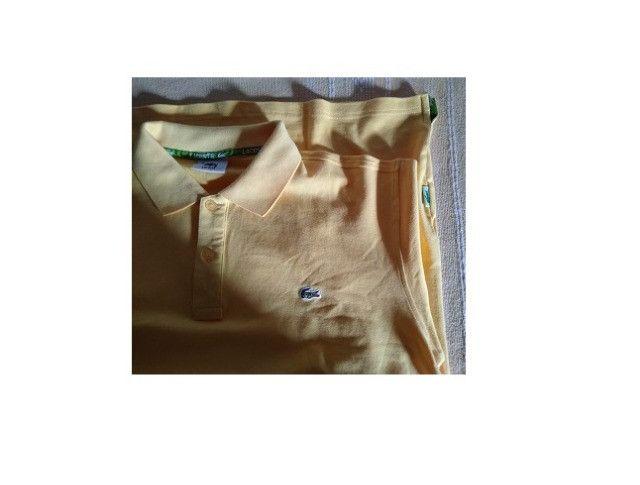 Camisa Polo Lacoste - Foto 4