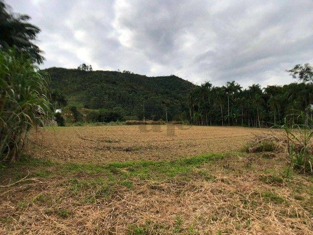 Terreno com 2.582 m² no braço em Camboriú-SC - Foto 5