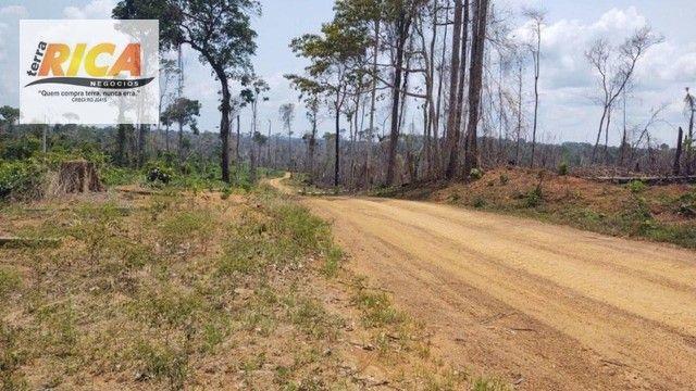 Fazenda à venda, com 750 hectares na Área Rural de Porto Velho/RO - Foto 10
