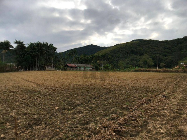 Terreno com 2.582 m² no braço em Camboriú-SC - Foto 6