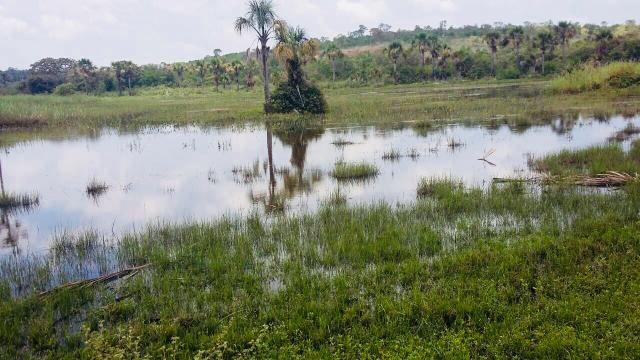 Fazenda Buritizeiro - Foto 3