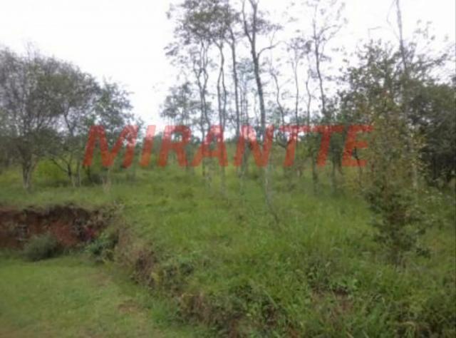 Terreno à venda em Serra da cantareira, São paulo cod:316545 - Foto 2