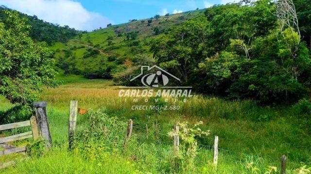 Fazenda à venda, , zona rural - carlos chagas/mg - Foto 13
