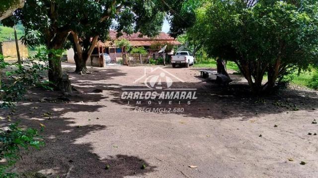 Fazenda à venda, , zona rural - carlos chagas/mg - Foto 4