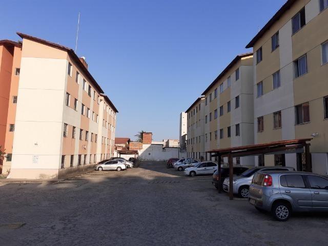 Serrinha - Apartamento 44,39m² com 2 quartos e 1 vaga - Foto 5