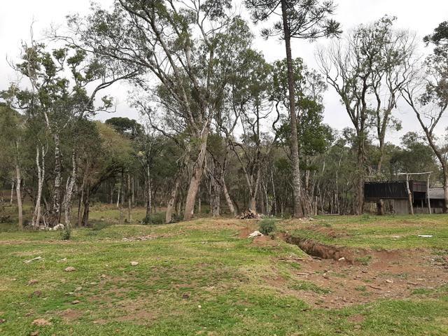 Fazenda de 100 Alqueires. 70 de capoeira - 16 km da Colônia Vitória. Guarapuava PR - Foto 7