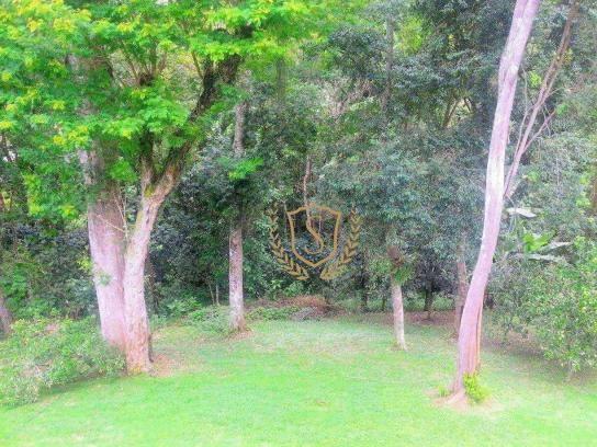 Terreno à venda, 1600 m² por r$ 100.000 - parque do imbui - teresópolis/rj - Foto 2