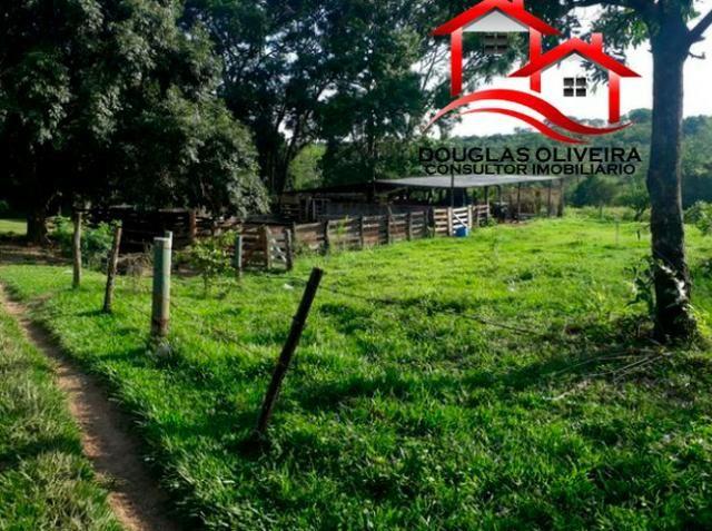 Sitio de 23 Alqueires em Pedregulho - Foto 8