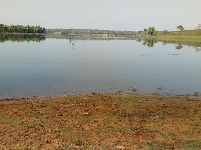 Fazenda 1.100 hectares Lago do Manso na Água Fria - Foto 4
