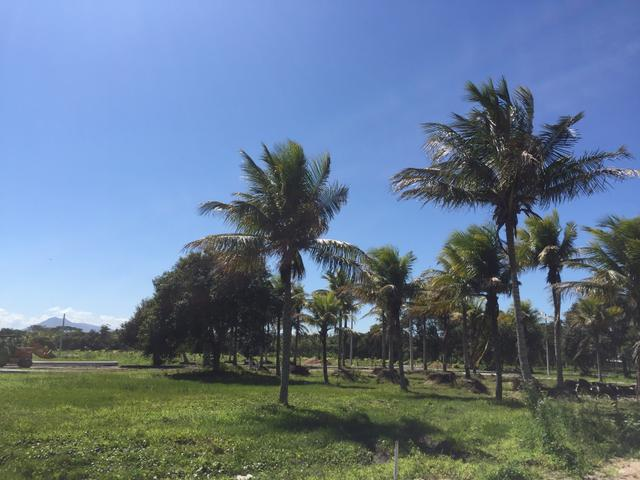 Conheça o que há de melhor em Unamar Cabo Frio 04 - Foto 4