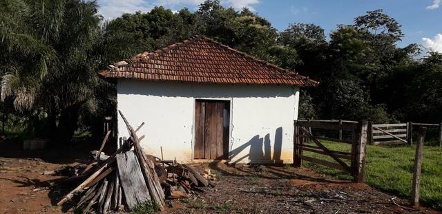 Chácara à venda de 1 alqueires e meio no município de Firminópolis - Foto 9