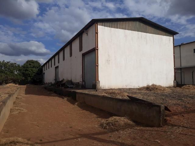 Galpão/depósito/armazém para alugar em Distrito industrial, Uberlândia cod:876388 - Foto 5