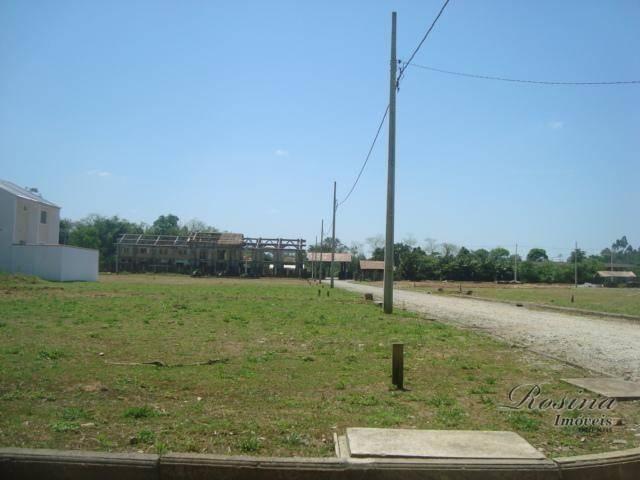 Òtimos terrenos para investimento em morretes - Foto 10